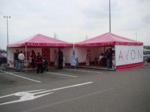 Avon-2012_Moje-volba-velke-akce_02-300x225 Avon-2012_Moje-volba-velke-akce_02